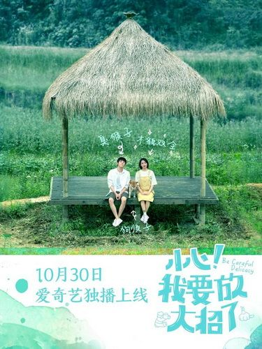 Download Be Careful Delicacy OST